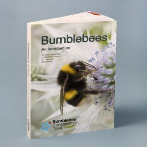 """Bumblebees - an introduction"" NEW!"