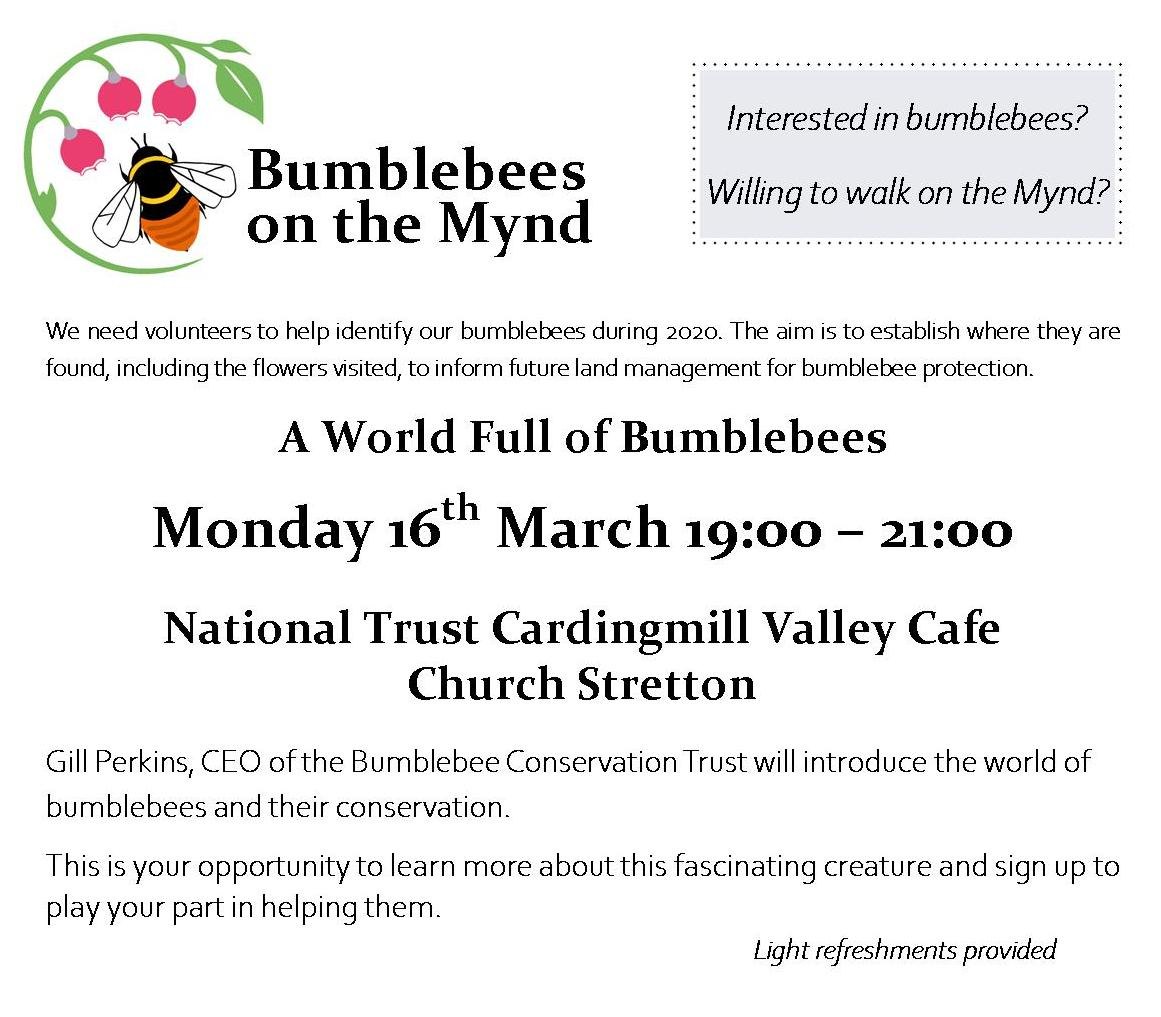 Bumblebees on the Mynd @ National Trust Cafe, Carding Mill Valley, Church Stretton | England | United Kingdom
